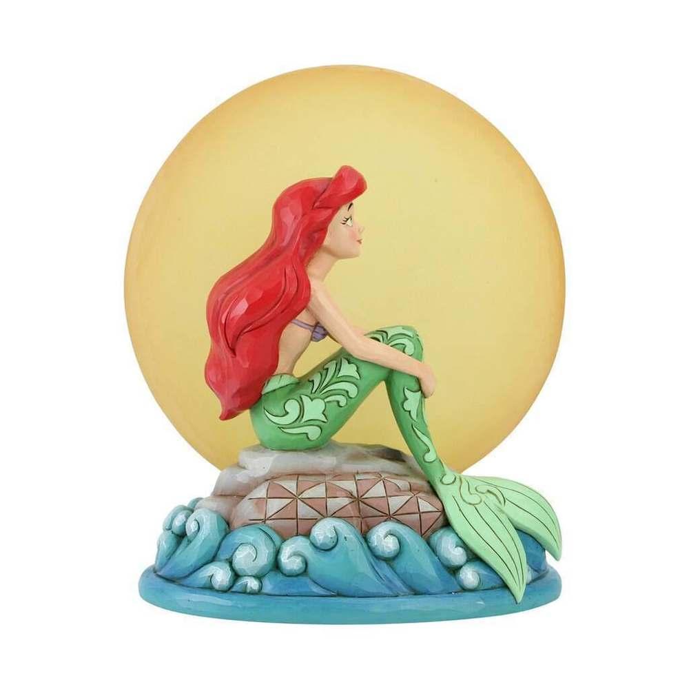 Ariel au clair de lune